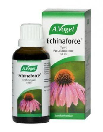 Echinaforce punahattu-uute
