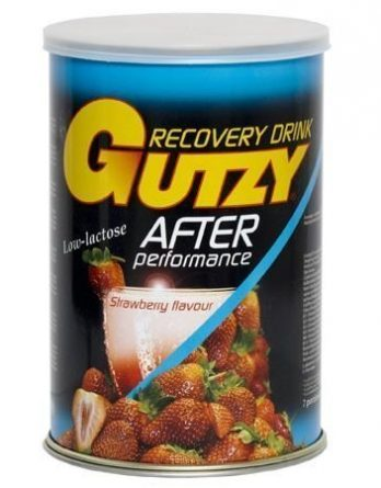 Gutzy Recovery Drink Metsämansikka 900 g